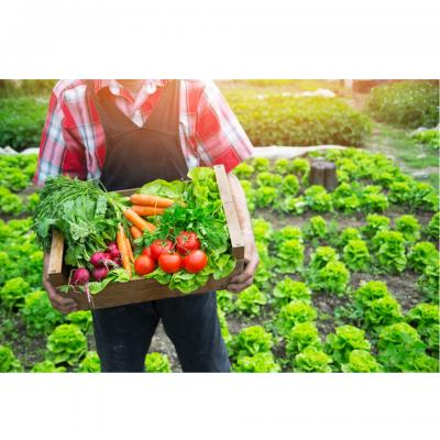 Quy định mới của EU về sản phẩm hữu cơ dành cho các nhà xuất khẩu ngũ cốc, đậu và hạt có dầu